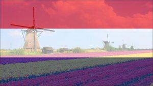 Holandski jezik